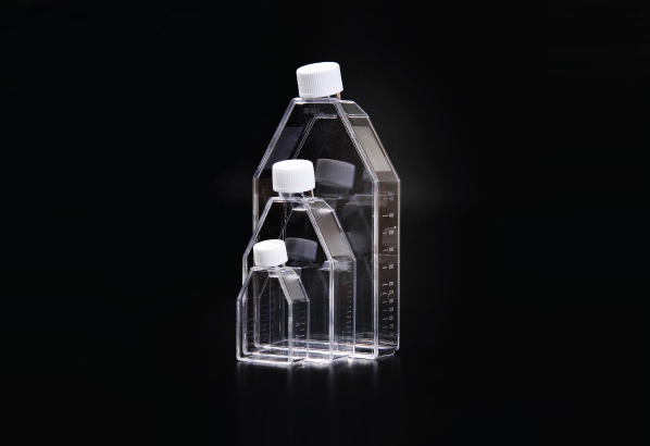 Cell Culture Flask-3