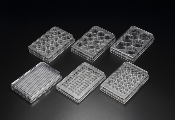 Cell_Culture_Plate